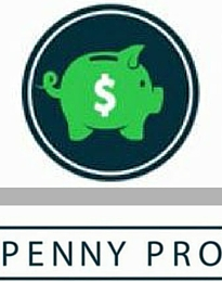 Penny Pro Synopsis