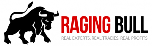 Raging Bull Stocks